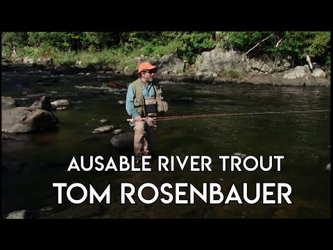 Ausable River Trout Fishing | Upstate New York