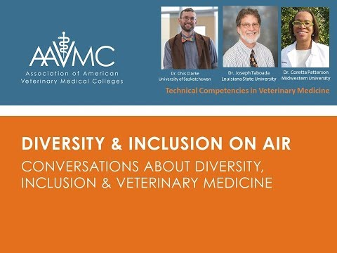 Diversity and Inclusion on Air: Technical Competencies & Essential Standards