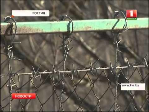 Украина закрыла более ста пунктов пропуска на границе с Россией