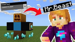 How to summon Mr beast in Minecraft !!!