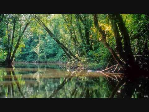 Palenque Sonoro - Especial Alpha & Omega