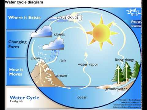Water Cycle Diagram  YouTube