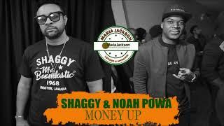 Shaggy ft. Noah Powa - Money Up (@DiRealShaggy @noahpowa)