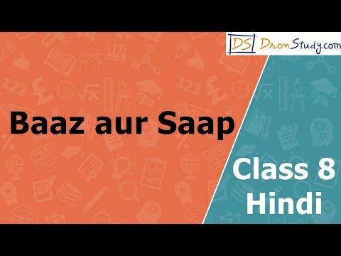 Baaz Aur Saap   CBSE Class 8   Hindi Video Lecture