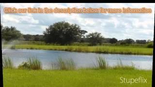 3-bed 2-bath Family Home For Sale In Myakka City, Florida On Florida-magic.com