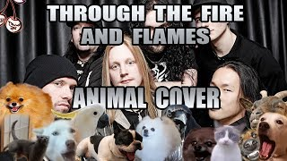 Baixar DragonForce - Through The Fire And Flames (Animal Cover)