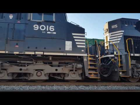 [HD] Railfanning NS Danville & Charlotte District  (Ft UP, YVRR, SRO Exports, BNSF, )