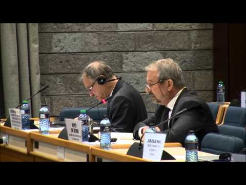 UN Seminar on Assistance to the Palestinian People, Nairobi, 1-2 July 2014 - Plenary II