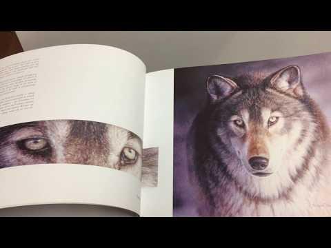 BOOK Renso Tamse Wild in Europa - wildlife art watercolors
