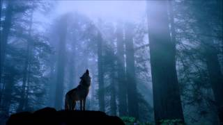 Repeat youtube video 1 Hour Native American Flute & Acoustic Guitar Music for Meditation of Wolf Spirit