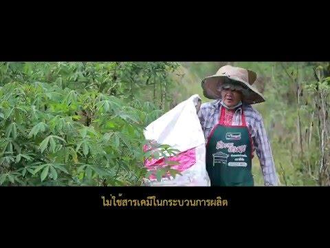 ไหมอีรี่อินทรีย์  Organic Eri Silk in Thailand