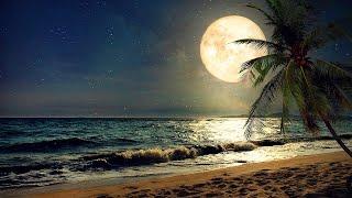 Relaxing Sleep Music, Calm Music, Meditation Music, Deep Sleep Music, Yoga, Study Music, Sleep ☯2033