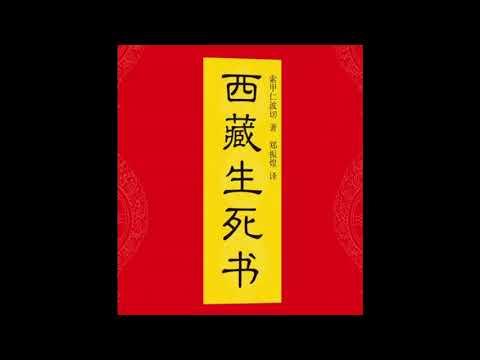 《西藏生死书》 第二十章 濒死经验:上天堂的阶梯 下