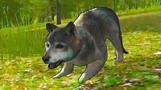 Симулятор маленького ПИТОМЦА #20 Волчья семья и щенята волчата  Кид и дикие животные