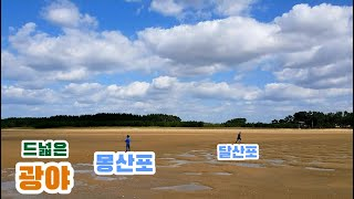 국립 몽산포 자동차  야영장 | 캠핑 | 해루질 | 달…