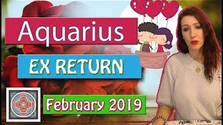 "Aquarius"" EX RETURNS""Yea! wishes come true, Baby! February 2019  LOVE READINGS"