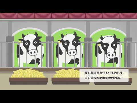 智慧型農業-牛