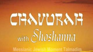 Chavurah, The Personality of the Ruach HaKodesh (the Holy Spirit)