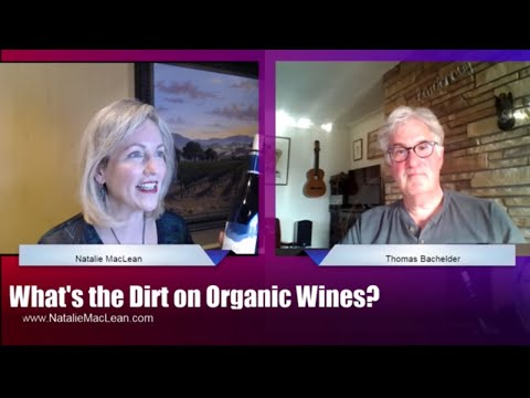 What the Dirt on Organic Wines? Part 2