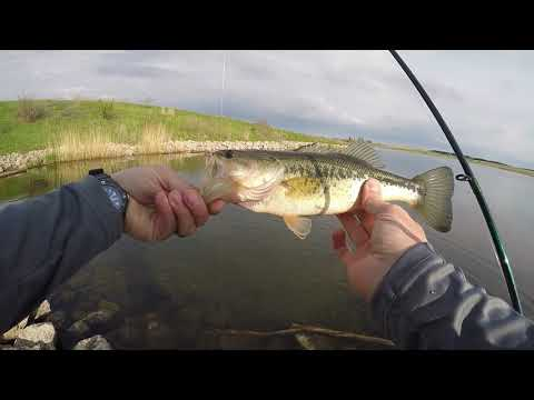 Slaying The Bass At Lost Grove Lake