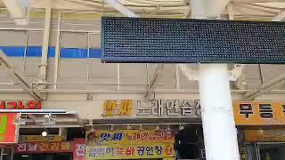 성남 모란장 5일장 춤추는 난정이품바님 열정공연~즐겨보…