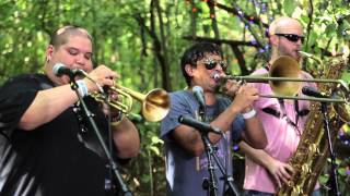 Brownout - Dangerbird (Live @ Pickathon Music Fest 2014)