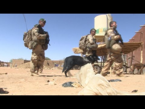 Aux côtés des forces françaises et maliennes dans le nord-est du Mali
