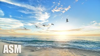 Air - Relaxing and Meditation Background Music For Videos. Yoga, Spa, Podcasts - by AShamaluevMusic
