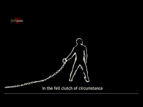 Мультфильм про барнаул