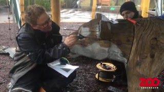 Ny tigerlegeplads i Zoo | Copenhagen Zoo