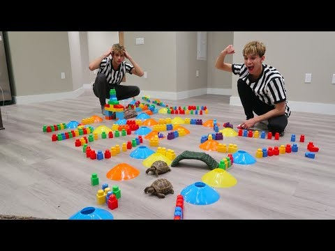 Thumbnail: TURTLE vs. TURTLE OBSTACLE COURSE RACE!