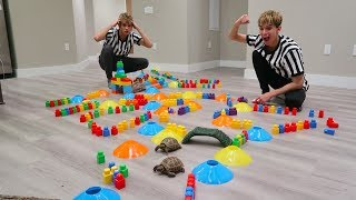 TURTLE vs. TURTLE OBSTACLE COURSE RACE!