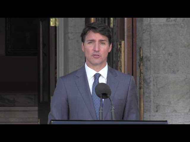 The prime minister has appointed Bill Blair to the new portfolio of Border Security and Organized Crime Reduction in a cabinet shuffle. Justin Trudeau says strong voices are needed to face what he sees as Conservative fearmongering. (The Canadian Press)