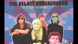 Chapterhouse - Lady Godiva's Operation (The Velvet Underground) fro...
