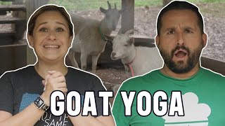 Jen and Chad Try: Goat Yoga