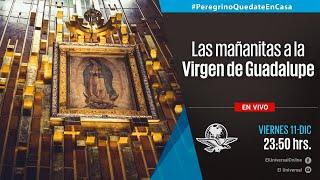 Sigue en vivo las Mañanitas a la Virgen de Guadalupe