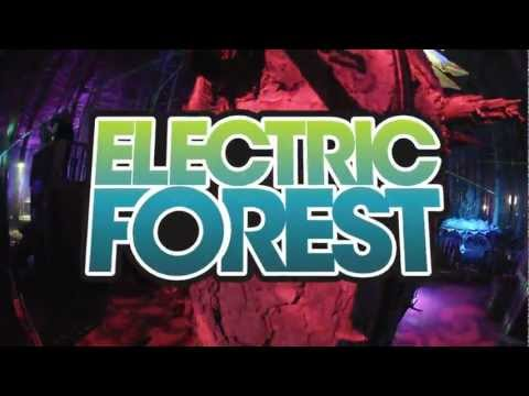 Electric Forest 2012 - Timelapse 2 HD