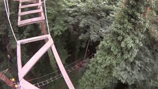 Kletterwald Brühl - Schwindelfrei - X-Parcours