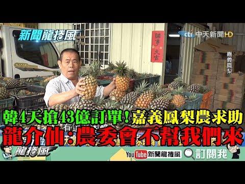 【精彩】韓4天搶43億訂單!嘉義鳳梨農求助韓 龍介仙:農委會不幫我們來!