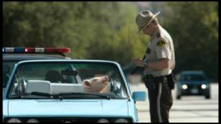 Geico Pulled Pork Advert Thumbnail