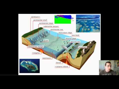 Ocean Basins (Part 1): Features of the Ocean Floor (Continental Margin)