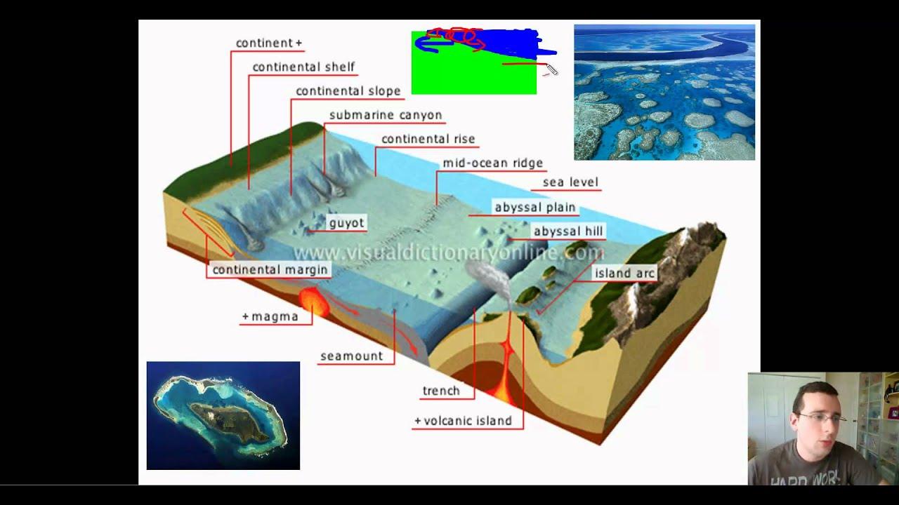 A sea is smaller than an ocean. Ocean Basins Part 1 Features Of The Ocean Floor Continental Margin Youtube