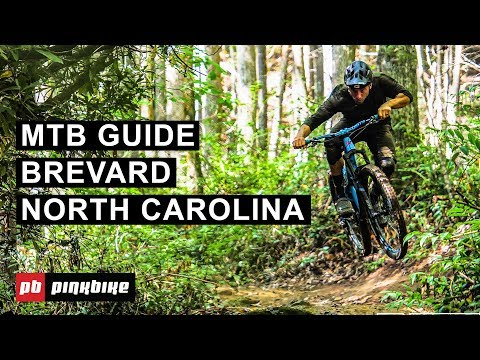 Mountain Biking In Brevard, North Carolina - The Complete Guide   Local Flavors