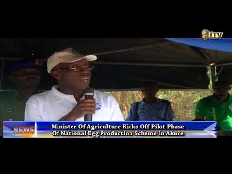 Agric Minister kicks of pilot phase of National Egg Production Scheme in Akure