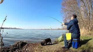 Фидерная рыбалка на Воронежском водохранилище Сезон 2021