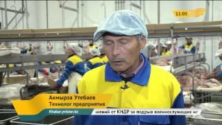 Мясо казахстанской индейки завоевывает зарубежные рынки