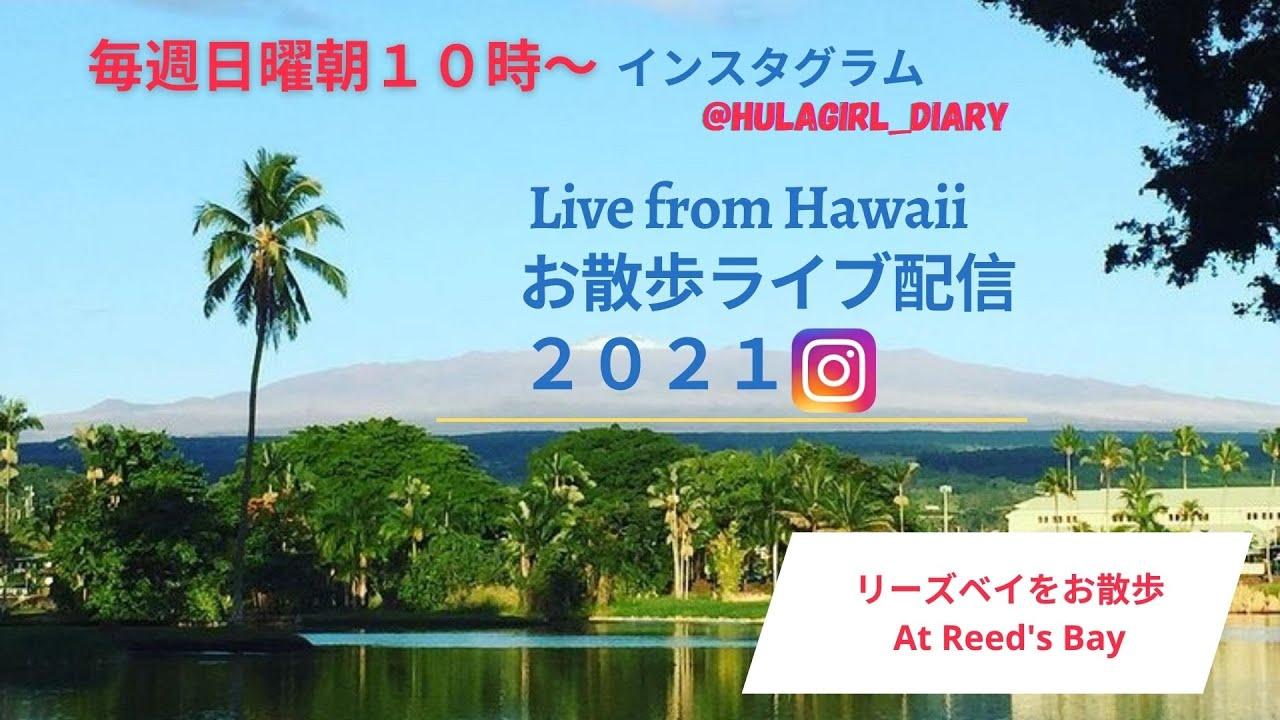 【7/24/2021 リーズベイをお散歩】Live- At Reed's Bay