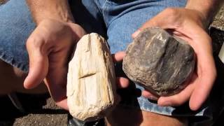 Anasazi Metate & Pottery & Hammerstones with Rusty