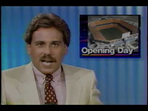 1987 Dolphins Scrimmage