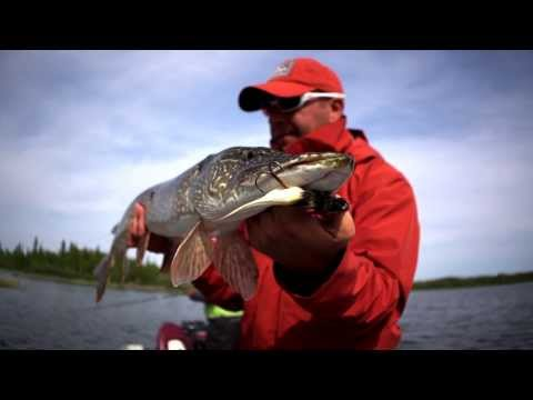 PESCA IN CANADA  ( i Northern Pike del Great Slave Lake)